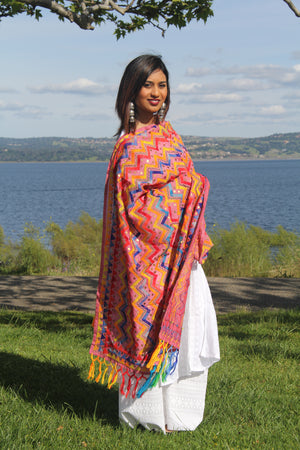 Phulkari Embroidered Dupatta - Sarang