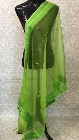 CHANDERI SILK MIRROR BORDER DUPATTA - Sarang