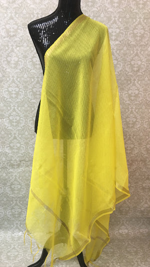 ORGANZA MULTICOLORED DUPATTA - Sarang