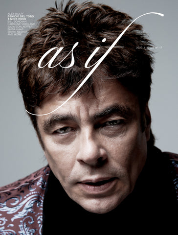 Issue nº17 BENICIO DEL TORO X MICK ROCK