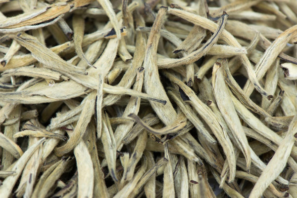 Yunnan, Silver Needle, white tea