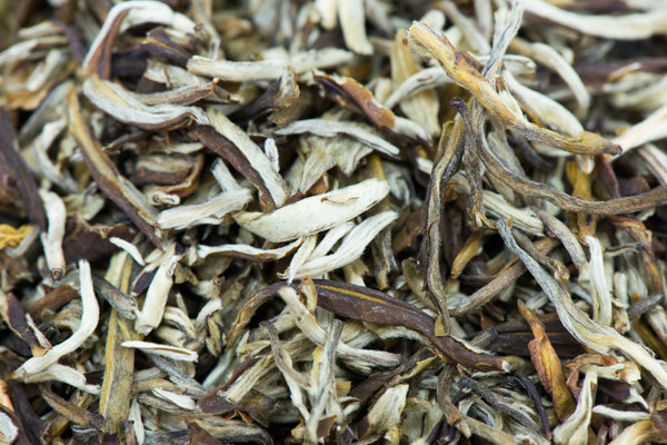 Jasmine, Silver Needles, white tea