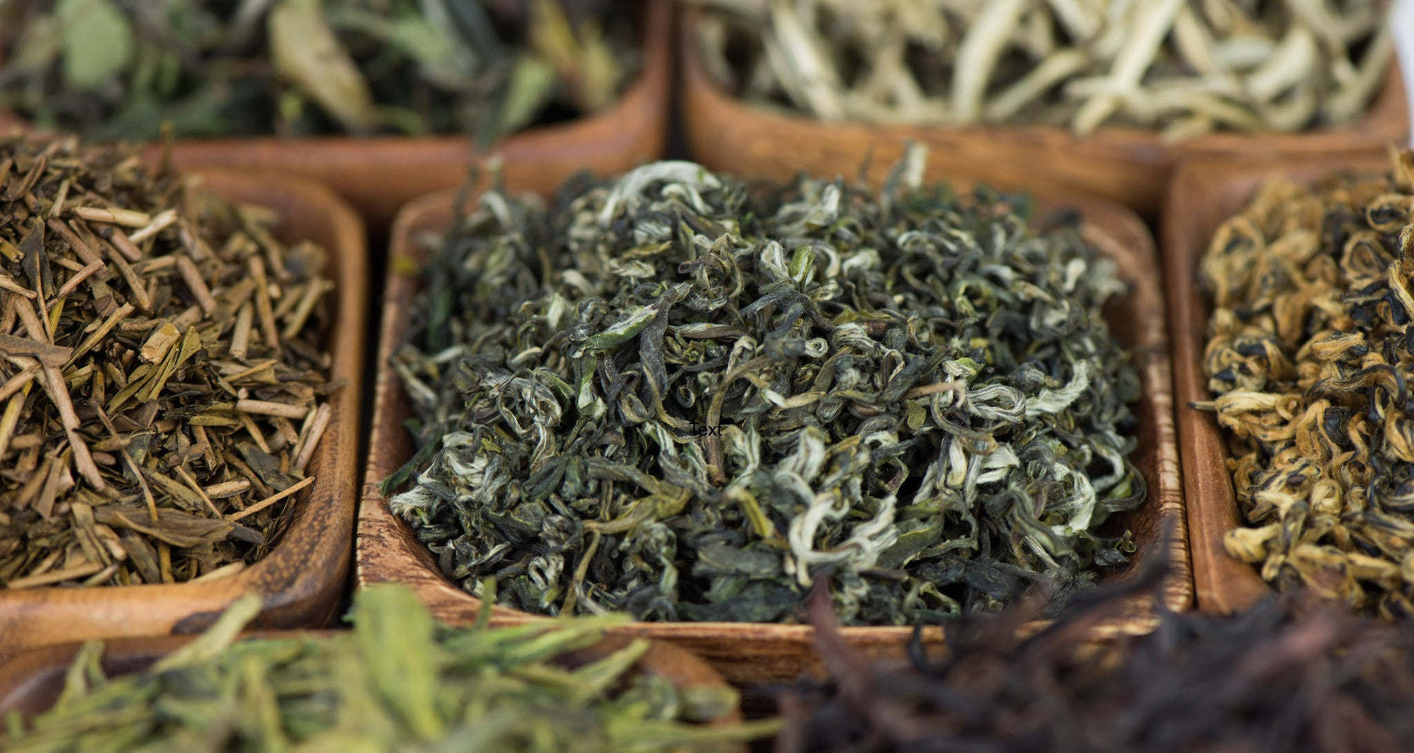 green tea teas dragonwell loose leaf