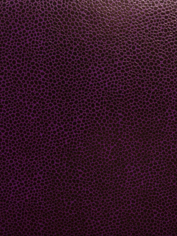 PEBBLES STA-KLEEN PURPLE
