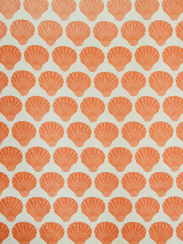 SEASHELLS CORAL (Sheer)