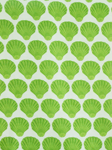 SEASHELLS LIME (Sheer)