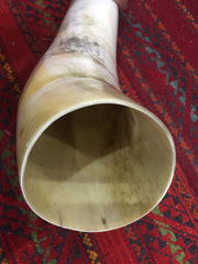 HUGE Ceremonial Horn - real horn trumpet. Viking horn.