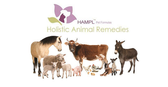 Natural Animal Formulas Providing A Worldwide Service