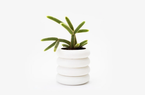 Stoneware Stacking Planter Tall: 8 x 8 x 8 in DESIGNED BY CHEN CHEN AND KAI WILLIAMS