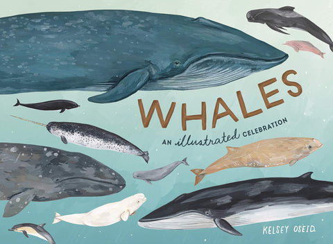 Whales: An Illustrated Celebration by Kelsey Oseid