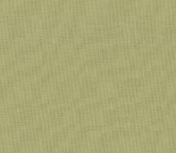 Moda Bella Solids in Sage - 9900 35