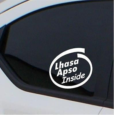 2x  Lhasa Apso stickers Inside car decal - Art & Text