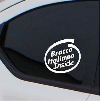 2x Bracco Italiano stickers Inside car decal - Art & Text