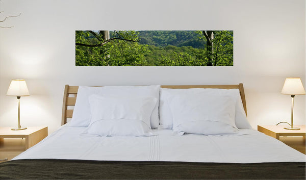 forested wall decal 118 x 26 cm for the home or office. - Art & Text