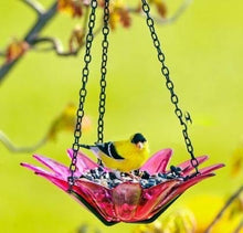 Load image into Gallery viewer, Daisy Feeder or Bird Bath Petite