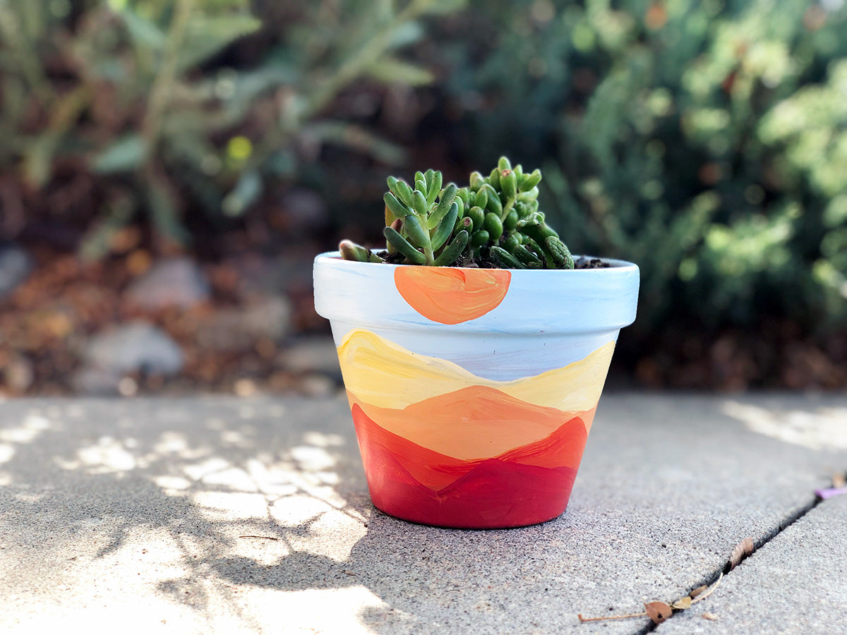 Painted Succulents Pot Kids' Class