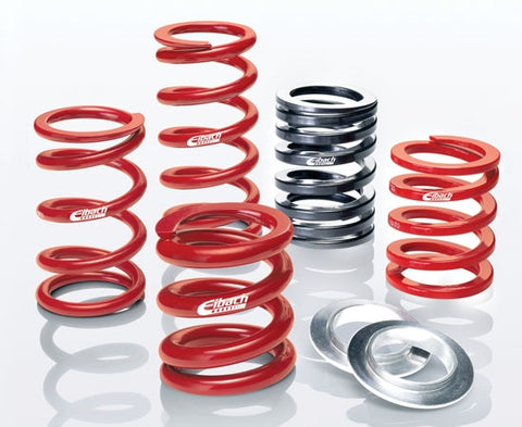 EIBACH RACE SPRING SYSTEM | ERS