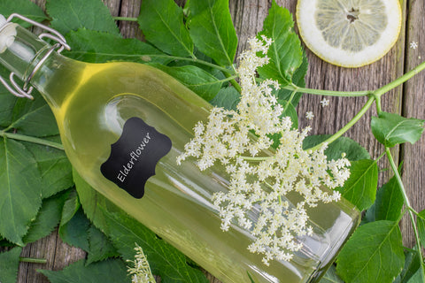 Elder Flower Champagne