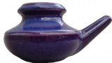 Purple Neti Pot