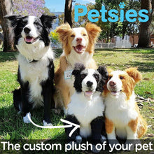Load image into Gallery viewer, Petsies Custom Stuffed Animals Accessories and Pillows of your Pet