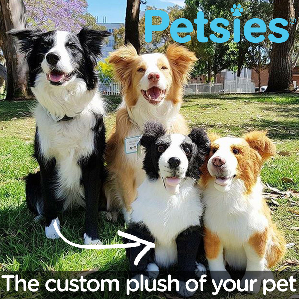 Petsies Custom Stuffed Animals Accessories and Pillows of your Pet