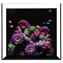 Load image into Gallery viewer, Cube 20 Starphire Ultra Clear 20 Gallon Saltwater and Freshwater Aquarium