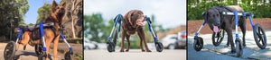 Adjustable Dog Wheelchairs