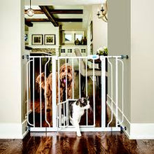 Load image into Gallery viewer, CARLSON PET PRODUCTS Extra Sized Walk-Thru Gates