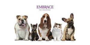 Embrace Pet Insurance For Cats and Dogs
