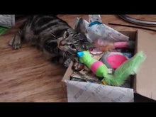 Load and play video in Gallery viewer, Kitnipbox - Month or monthly Cat Subscription Box of Cat Toys and Treats