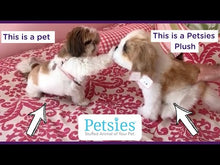 Load and play video in Gallery viewer, Petsies Custom Stuffed Animals Accessories and Pillows of your Pet