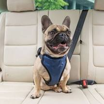 Load image into Gallery viewer, PetSafe Deluxe Vehicle Safety Harness