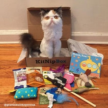 Load image into Gallery viewer, Kitnipbox - Month or monthly Cat Subscription Box of Cat Toys and Treats