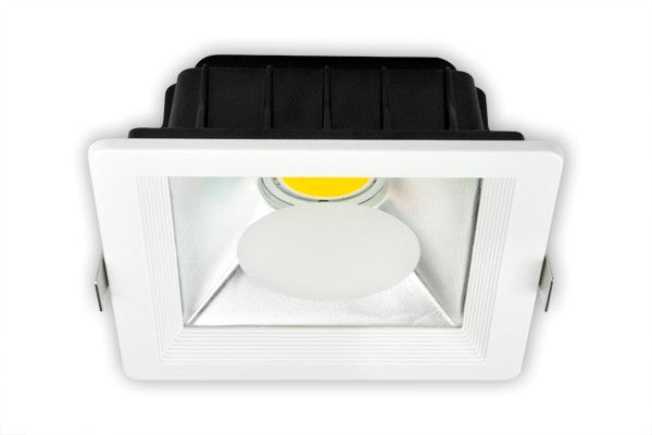 LED Down Light - 10W/20W/30W COB