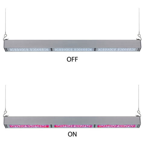 LED Grow Light: 150W Linear Box