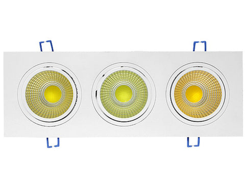 LED Down Light - 60W