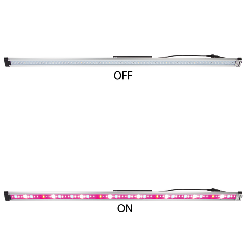 LED Grow Light: 65W Linear Box