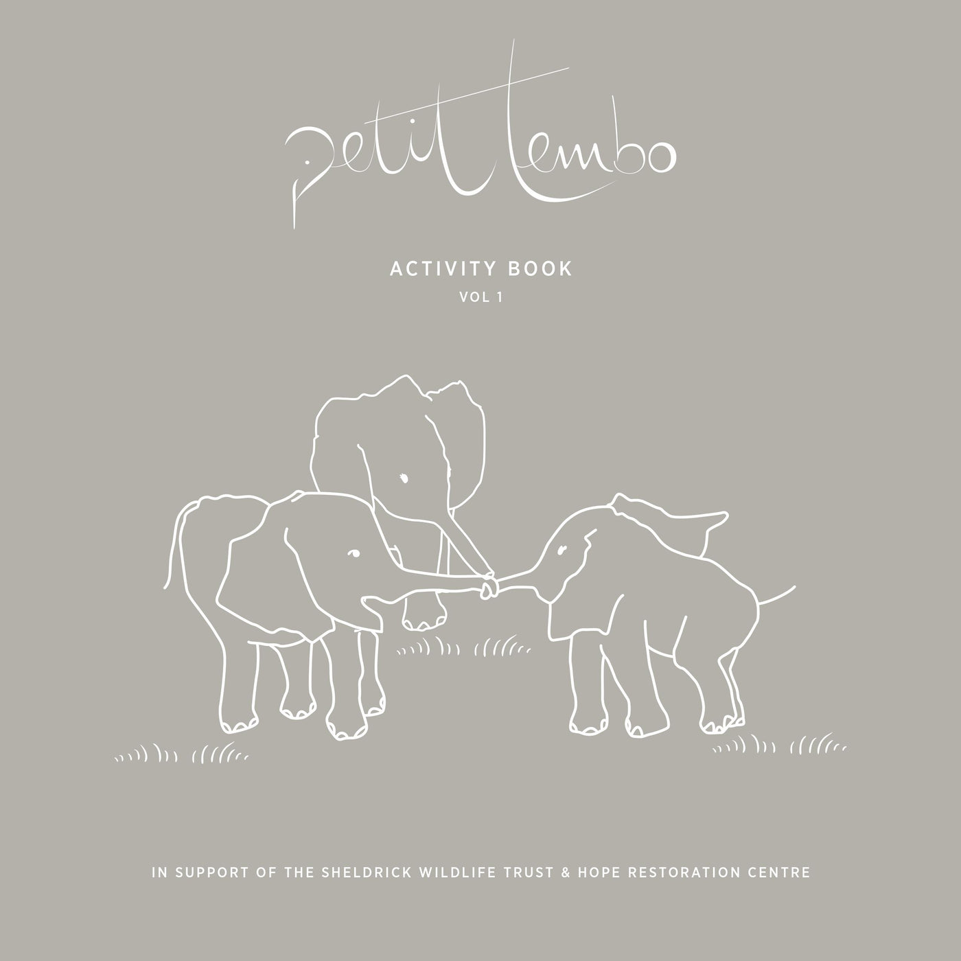 petitTembo Activity Book