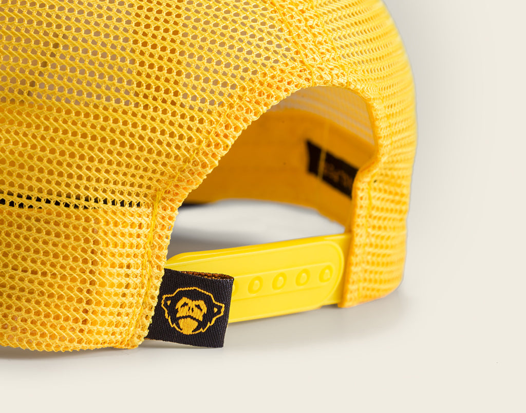 Yellow Rose Feed Store Snapback