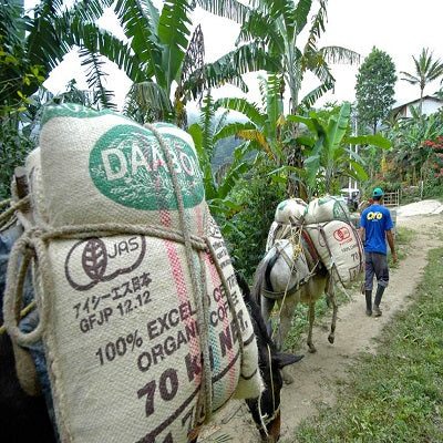 organic colombia coffee