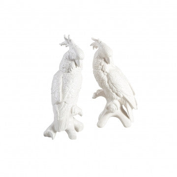 Large Cockatoos // * Free shipping