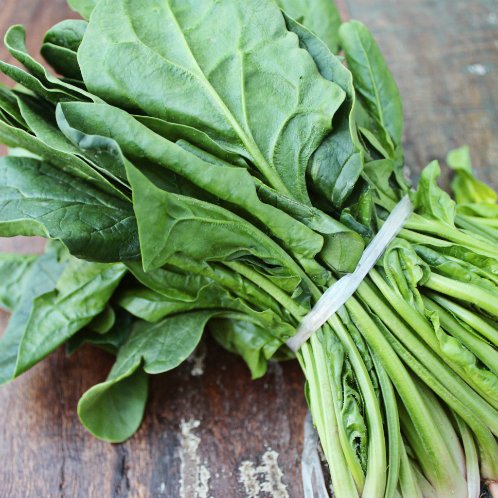 Pick of the Week - English Spinach