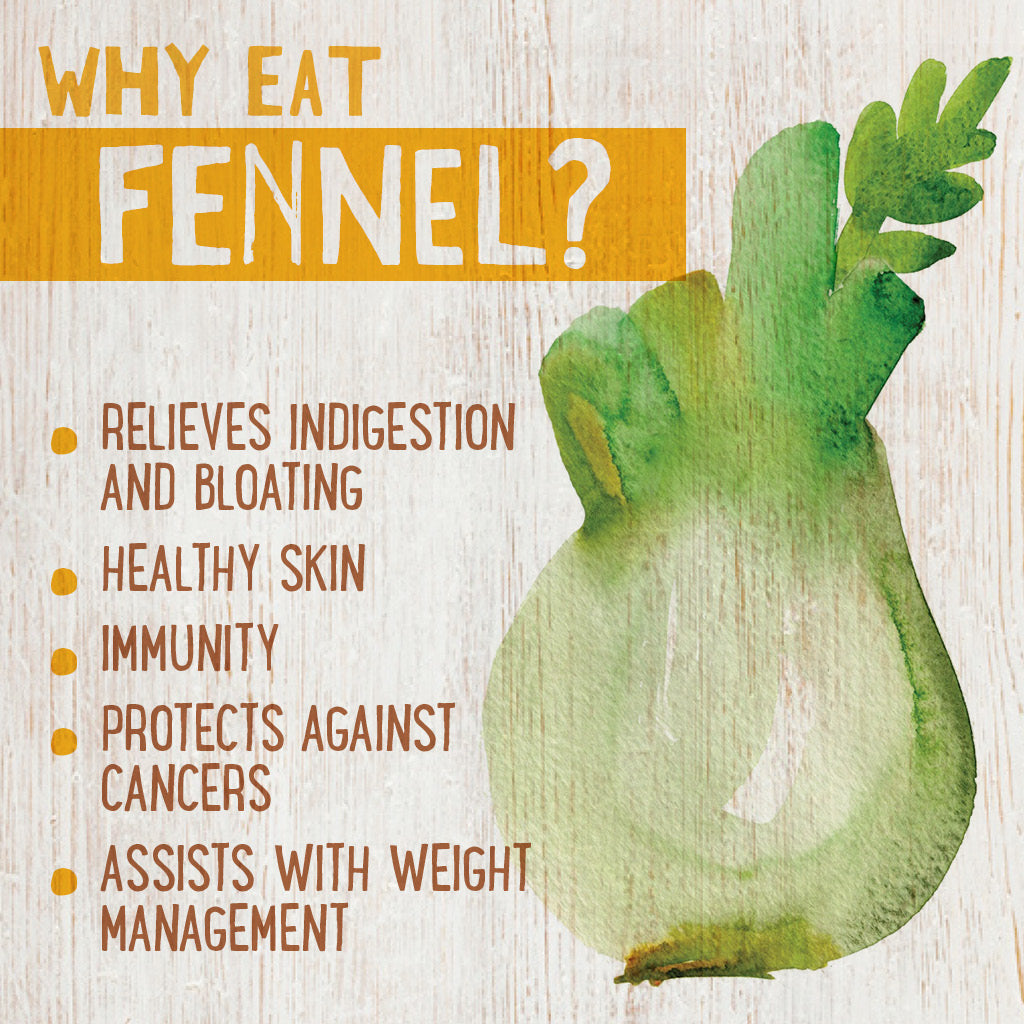 Fennel, a dietitian's guide