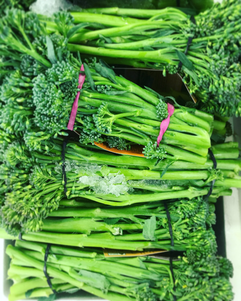 Broccolini - Pick of the Week