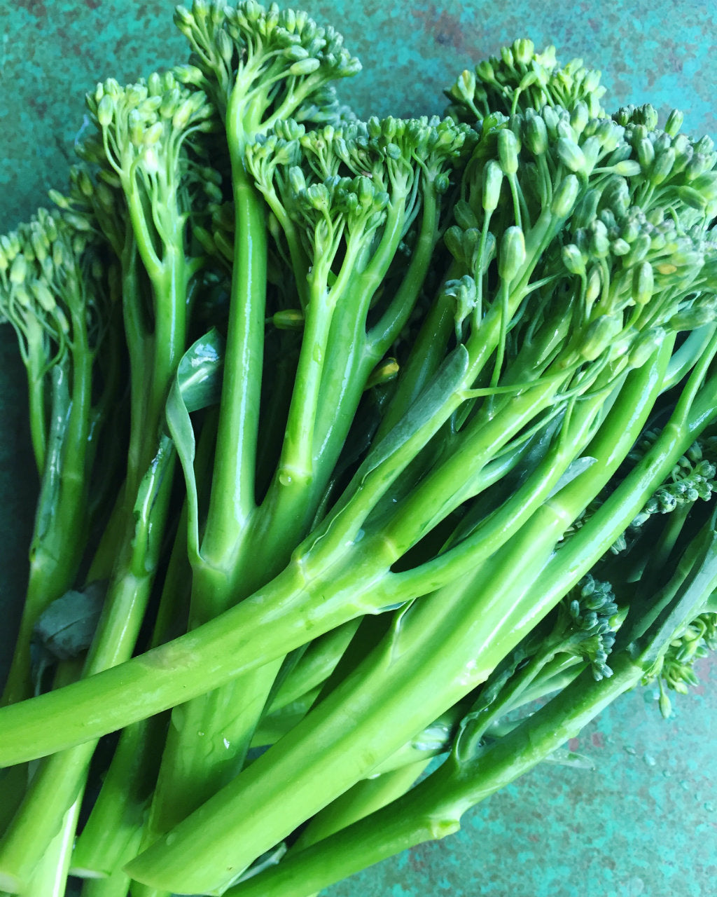 pick of the week broccolini