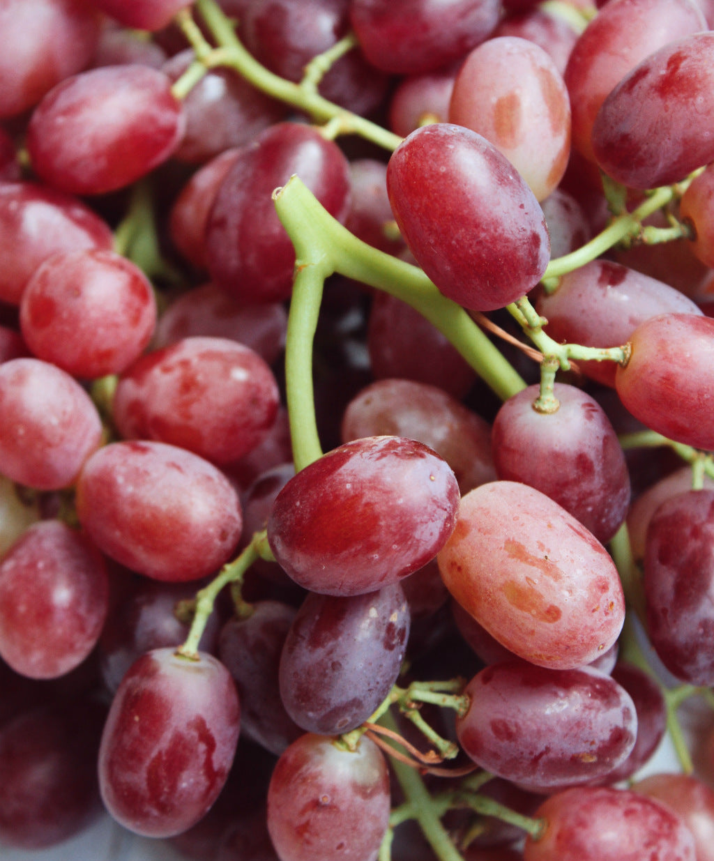 crimson seedless grapes pick of the week harris farm