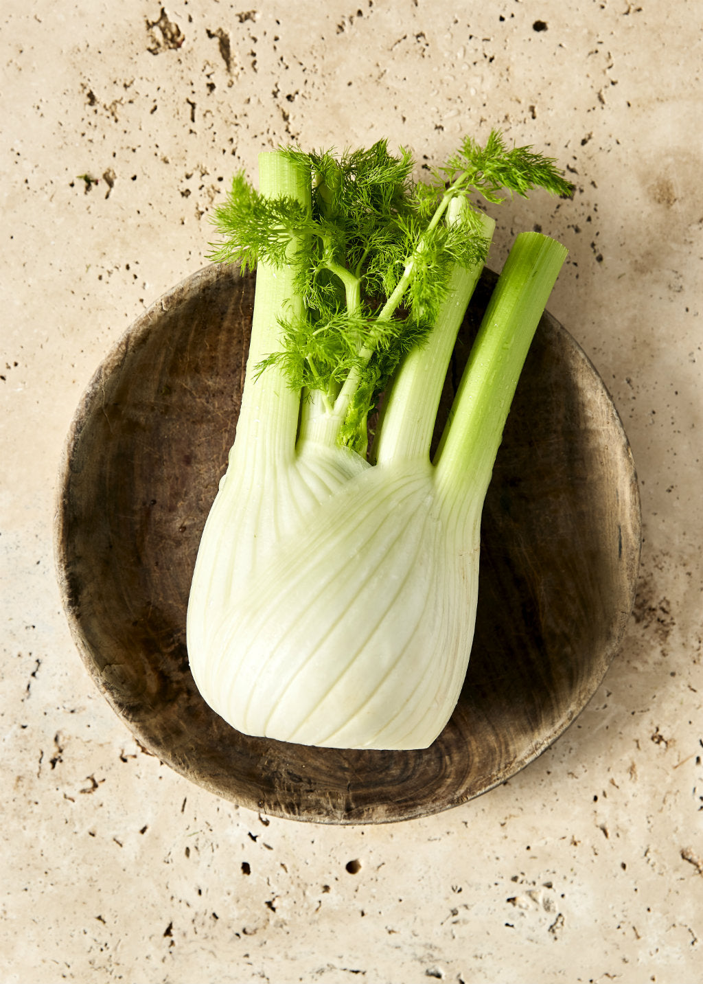 Pick of the Week Fennel | Harris Farm Markets
