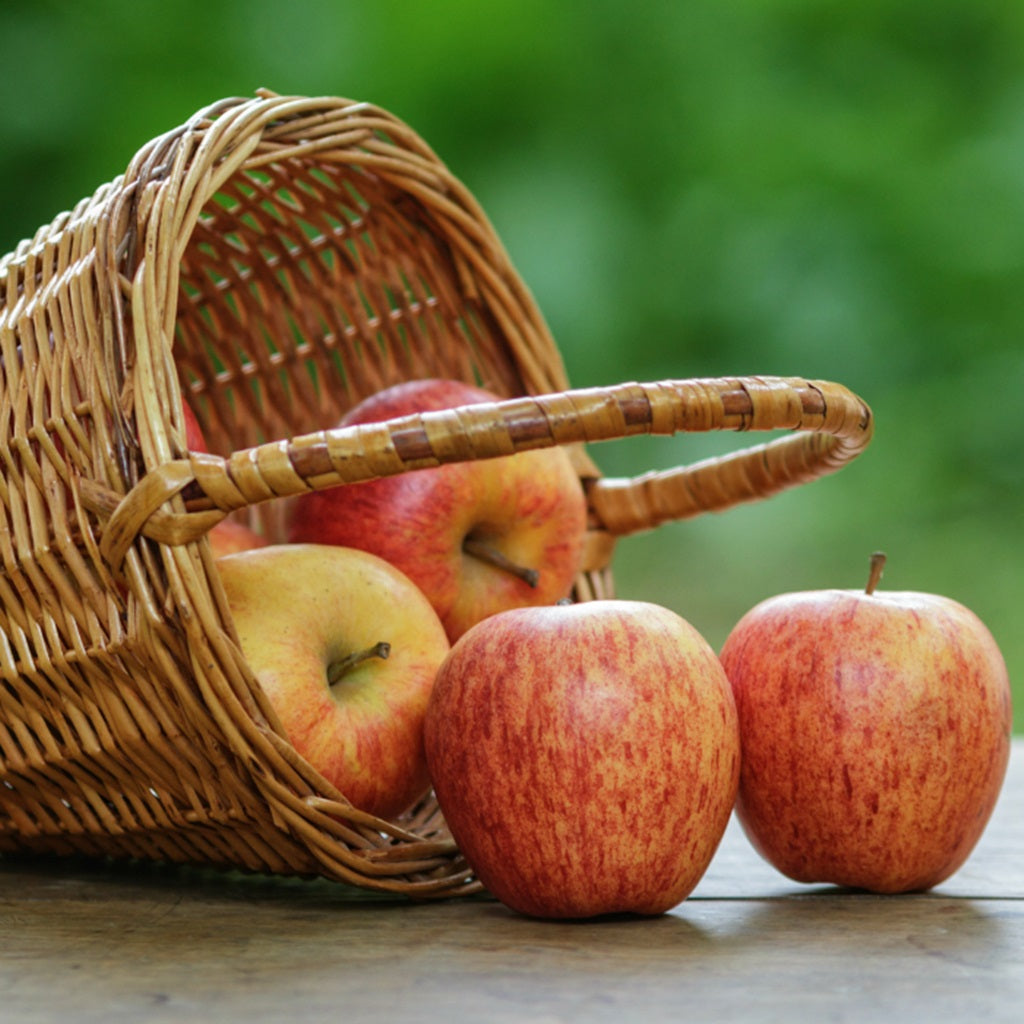 4 reasons to eat an apple a day