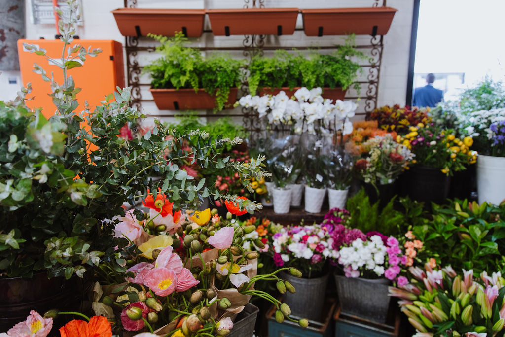 harris farm darby st cooks hill flower market