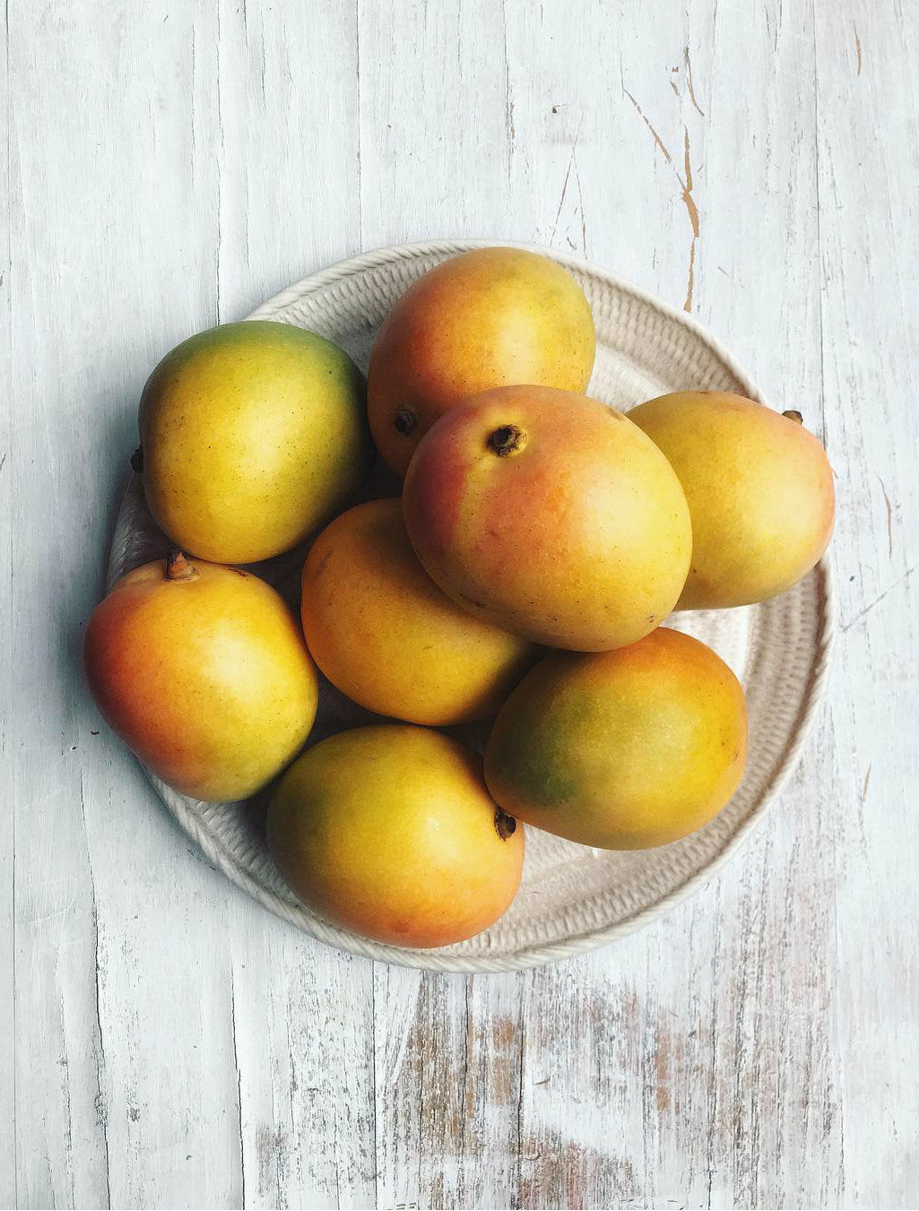 katherine mangoes - pick of the week